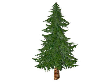 3D model Toon Textured Pine Tree VR / AR / low-poly MAX