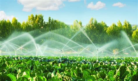 Improving Irrigation Water With The Ethix Water