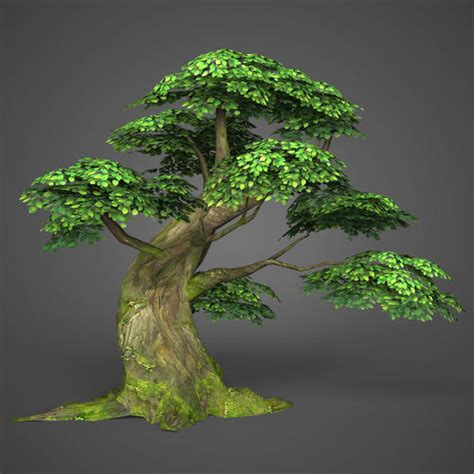 3D model Game Ready Low Poly Tree 06 | CGTrader