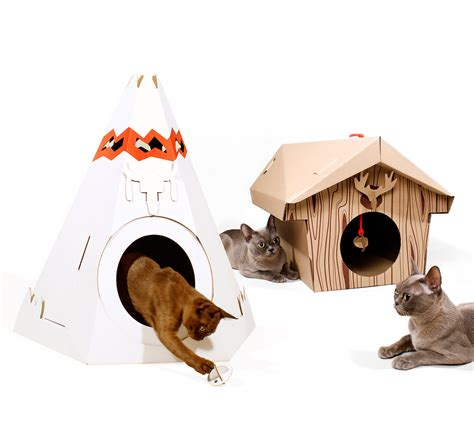 Cat Play House Content Gallery : Irresistible cardboard
