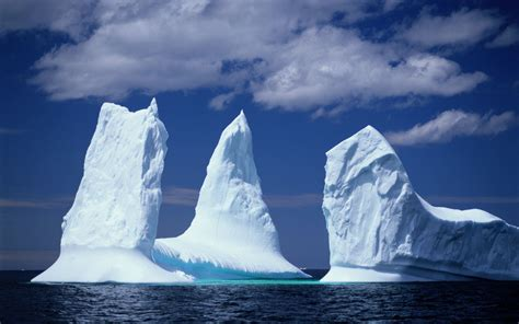 Canada's 'Iceberg Alley' Is Drawing Crowds, and You'll