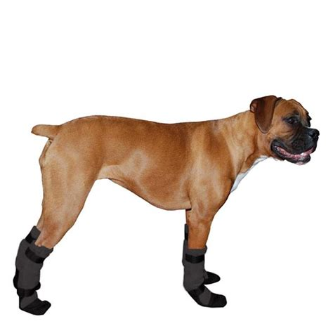 Boxer Dog Booties that Stay on Provide Traction and