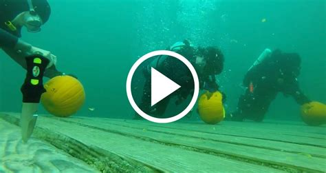 An Underwater Twist on Pumpkin Carving With Greater