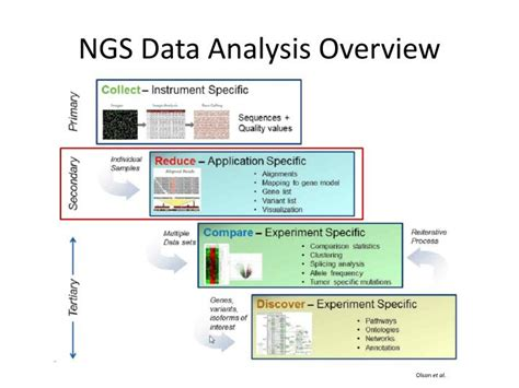 PPT - Introduction To Next Generation Sequencing (NGS