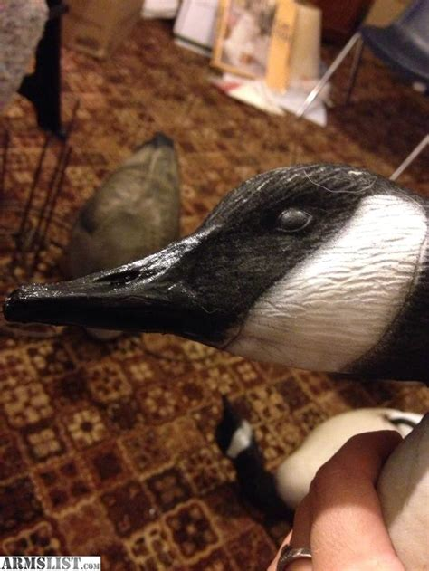 ARMSLIST - For Sale: Duck and goose decoy flocking and