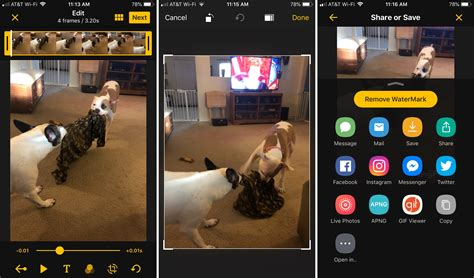 The best free apps for creating animated GIFs on iPhone